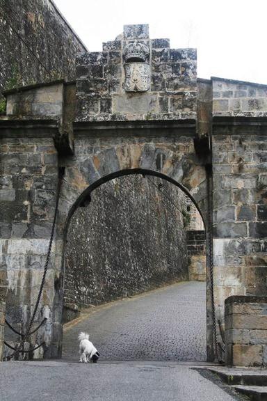 7. Pamplona - Portal de Francia