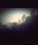 Brumas del amanecer en la zona de la Magdalena