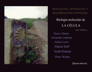 REPLICACIÓN, REPARACIÓN Y RECOMBINACIÓN HOMÓLOGA, CAPÍTULO QUINTO DE BIOLOQUÍA MOLECULAR DE LA CÉLULA