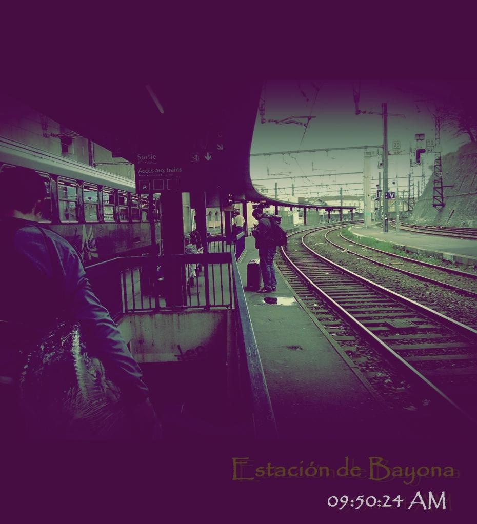Estación de Bayona en Francia