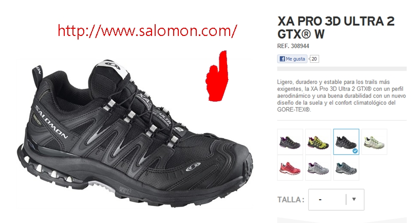 SALOMON COM