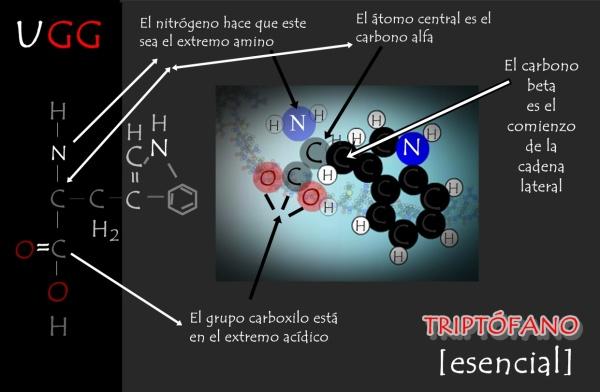 TRIPTÓFANO Y SU FORMULACIÓN