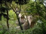 puente-de-penaflor-siglo-xii-grado-asturias_79011