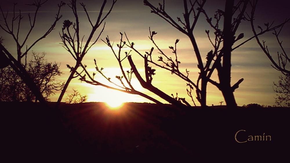 Crepúsculo en el Camino