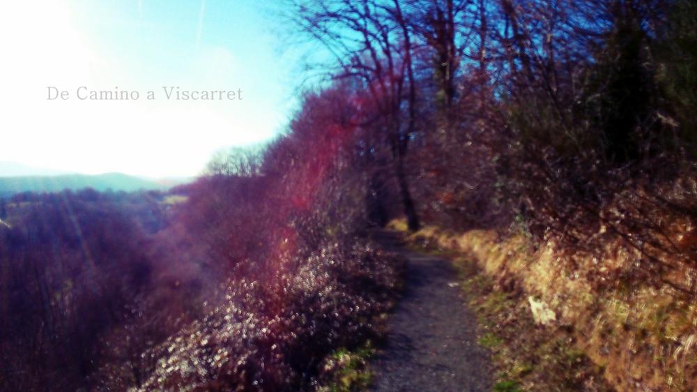 El Camino a Viscarret