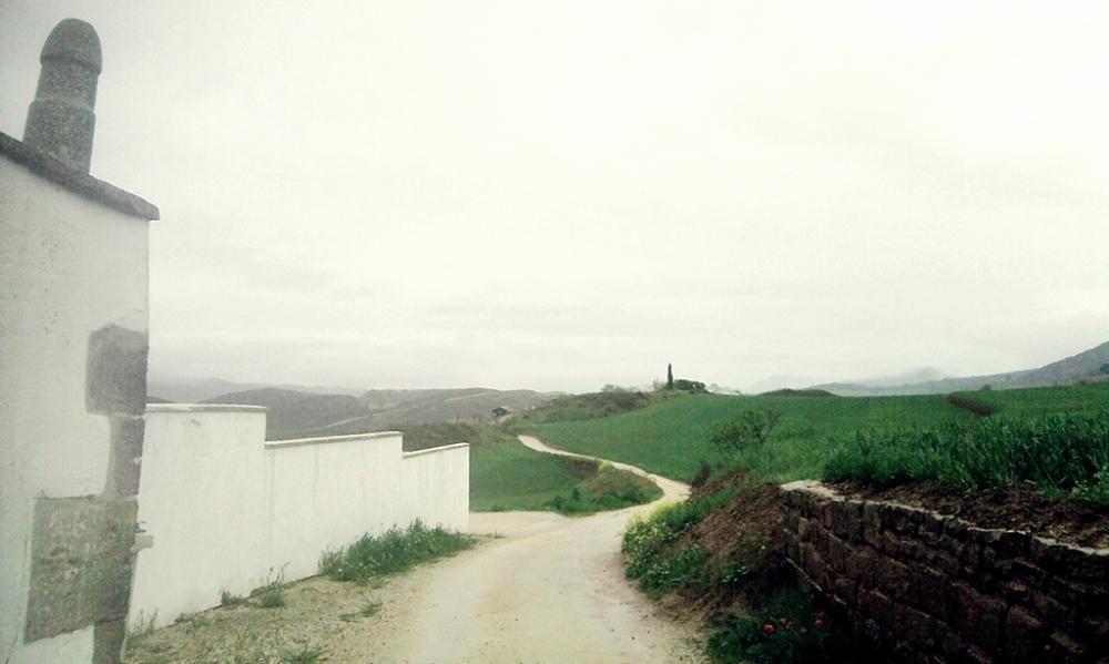 El Camino a la salida de Mañeru