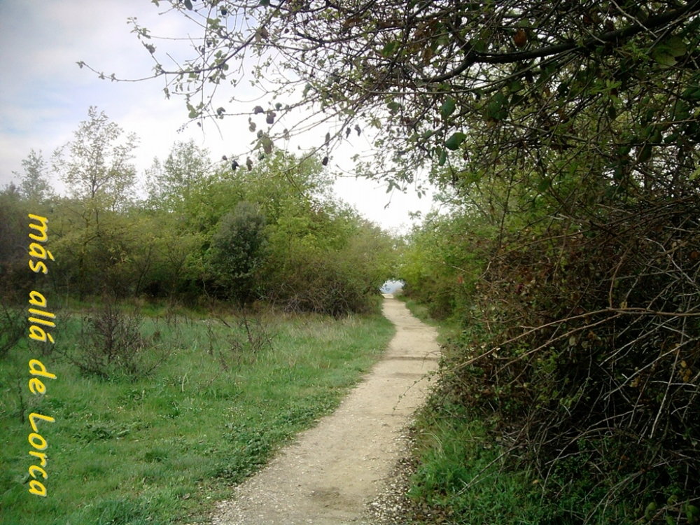 El Camino más allá de Lorca