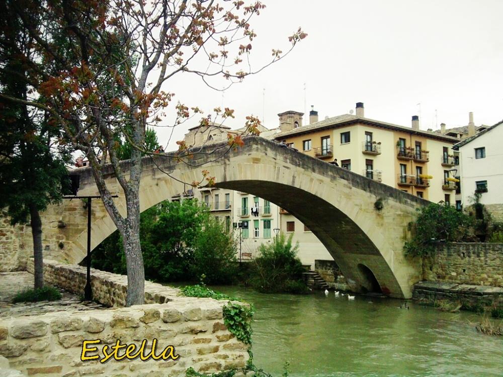 Puente sobre el río Ega