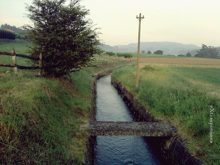 4. Por la senda verde del agua