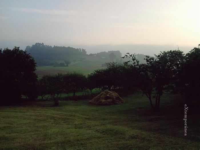 14. El paisaje de ahí