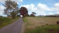 DSC_0529 seguimos la carretera b